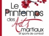 39__260x148_printemps-arts-martiaux-11-04-2012-small